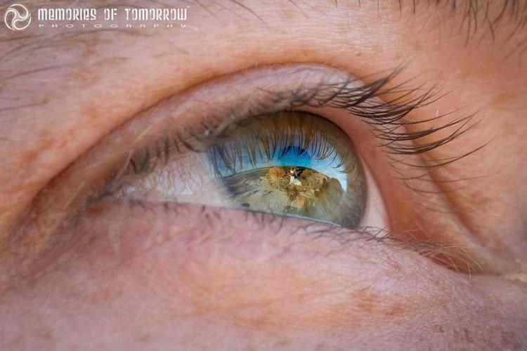 Eyescapes – потрясающее открытие Питера Шон-Адамса. Сайт свадебного ведущего, тамады Волгограда, Павла Июльского. Заказ услуг ведущего на свадьбу по номерам телефона: +7(937)-727-25-75 и +7(937)-555-20-20
