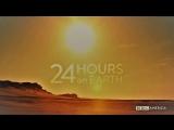 24 часа на Земле (1 серия)