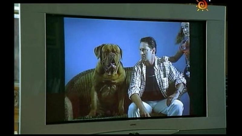 Т/С Домик с собачкой 10 серия (2002г)