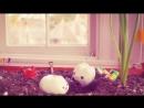 """Юмористические короткометражки """"Жизнь и приключения молочных зубов"""". Фильм 2-й """"Решили подрасти"""""""