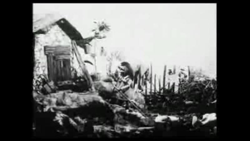 Владислав Старевич. Сборник фильмов 20-40 годов ХХ века