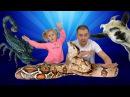 ОБЫЧНАЯ ЕДА ПРОТИВ МАРМЕЛАДА ТОП ЧЕЛЛЕНДЖ 2017 ИМПЕРАТОР СКАРПИОН и ОГРОМНАЯ ЗМЕЯ...