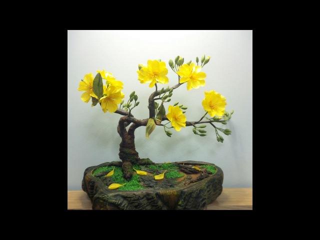 ABC TV   How To Make Artificial Bonsai Tree - Craft Tutorial
