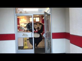 The Adventures of Cheburashka in Los Angeles / Приключения Чебурашки в Лос Анджелесе - TRAILER