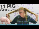 11 PIG expressions in English: