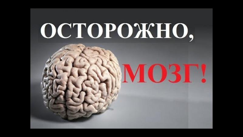 Осторожно, мозг!