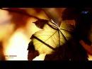 ♡ MIKAEL TARIVERDIEV - Memories (Relaxing music)