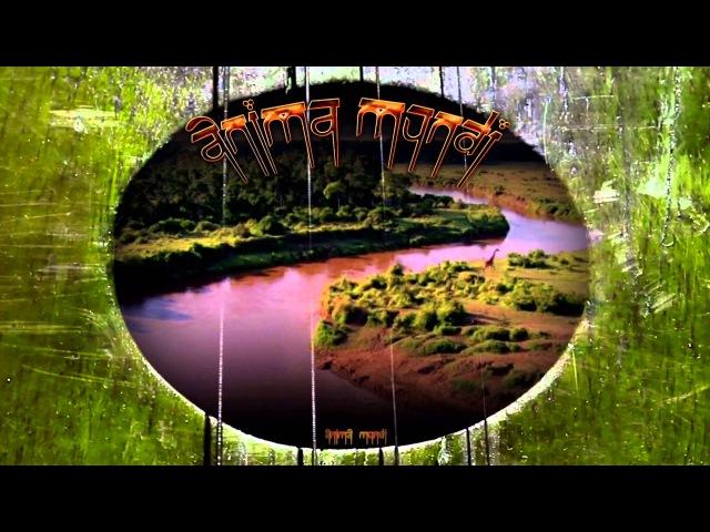 Anima Mundi The Human House The Lamplighter HD