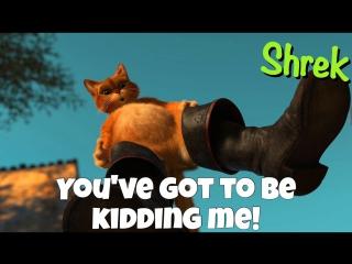 Фраза YOU'VE GOT TO BE KIDDING ME! из мультфильма Шрек / Shrek