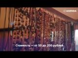 Кусочек российской Европы, город с потрясающей историей, природой и людьми — прекрасный Калининград