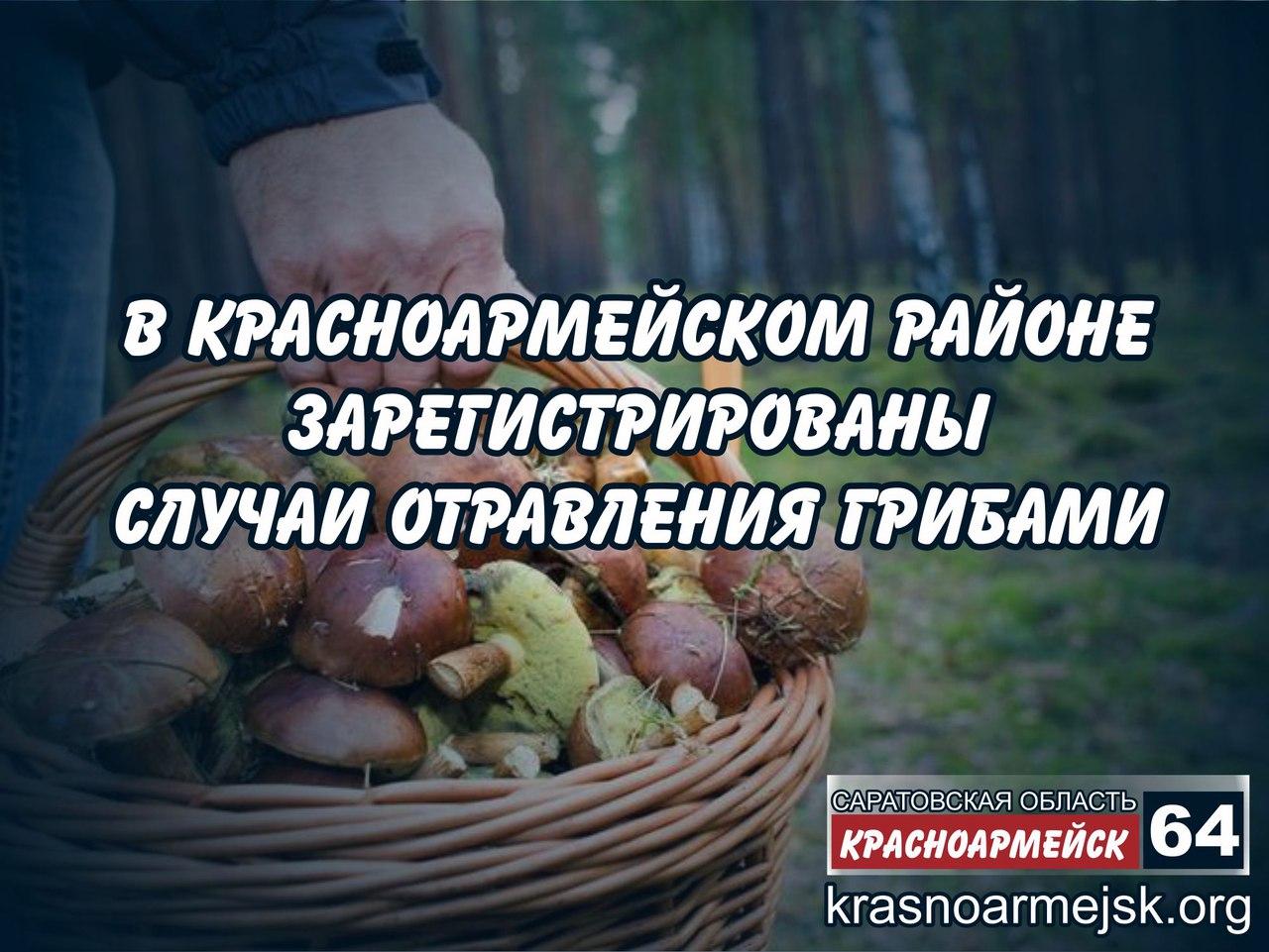 В Саратовской области число отравившихся грибами выросло в 2,5 раза
