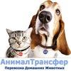 AnimalTransfer - Перевозка животных