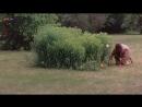 «Тайна «Чёрных дроздов» (1983)