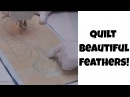 Machine Quilt a Beautiful Feather Design - Beginner Quilting Tutorial with Leah Day
