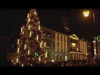 Самая большая в мире машина Голдберга зажигает рождественскую елку