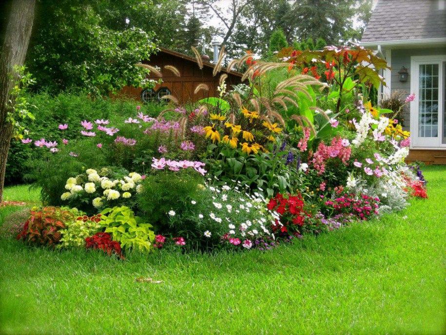 Создание миксбордера из многолетников - правила красивого цветника