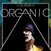 Слава Organic и Латифа 01.12.2016 Арт-паб ТриТон