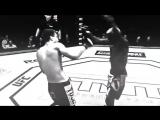 Matt Dwyer ULTIMATE MMA VINES