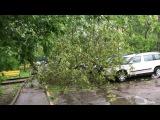 Жесть! Москва СЗАО последствия урагана 29.05.2017