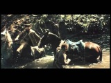 Эскадрон гусар летучих (1 серия) (1980) Полная версия