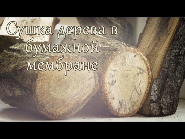 Сушка дерева в бумажной мембране. Интересный способ высушить дерево в домашних условиях