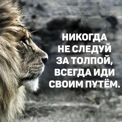 Евгений Жердев