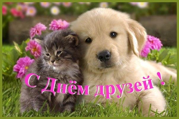 Фото №456241353 со страницы Валерия Ярышева