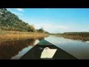 Skadar lake boat trip