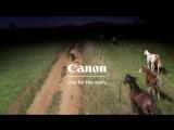 Музыка из рекламы Canon - Live for the Story (2017)