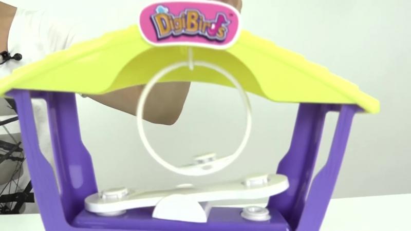 Интерактивные поющие птички DigiBirds Toys