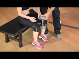 Knee Extensions, Leg Press Calf Raises &amp X-Centrics