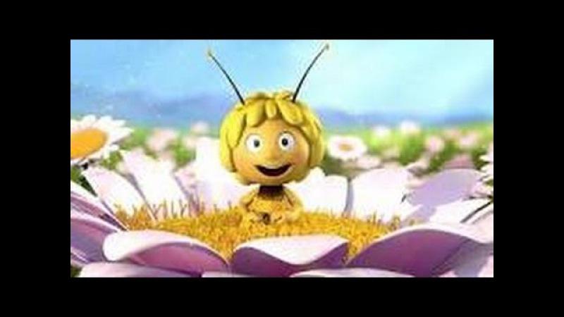 AKCENT- Pszczółka maja sobie lata Oryginał 2015 .AVI (Disco-polo)
