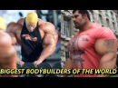 Biggest Bodybuilders Who Didnt Turn Pro That Make Ronnie Coleman Look Small Real Life Giants 2017