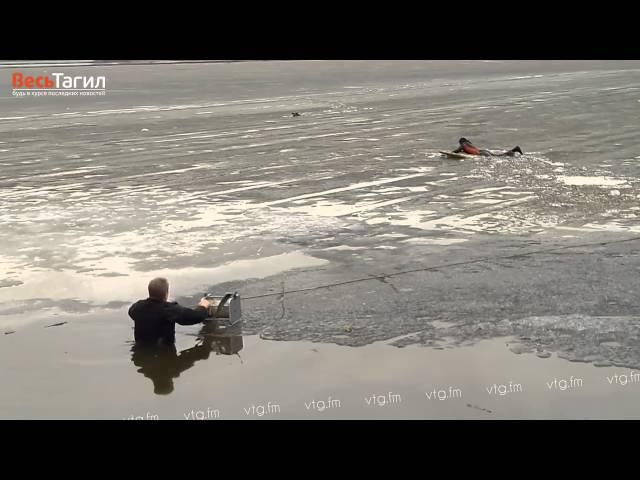Спасение собаки на тагильском пруду