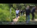 Владимир Машков на оживленной трассе Москвы спас уток