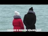 РЕАКЦIЯ на украинкий язык В КРЫМУ