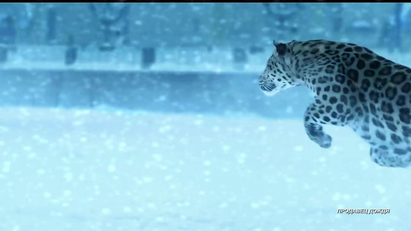 RAINBOW - Snowman [HD] - YouTube (720p)