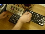 Roland TR09, Doepfer Dark Energy 2 &amp Moog Mother 32
