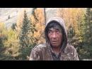 Алтайский заповедник Телецкое озеро © Иван Усанов
