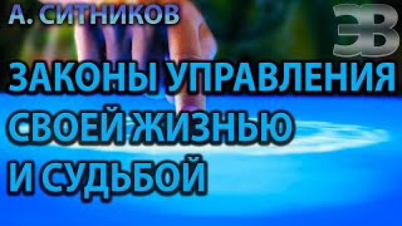 Законы управления своей жизнью и судьбой. А. Ситников