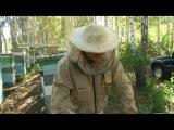 это видео содержит очень много полезных информаций для пчеловодов
