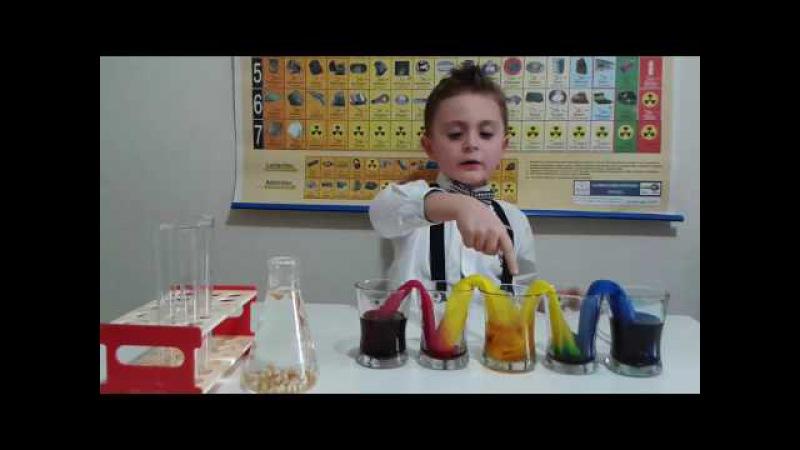 Eğlenceli Çocuk Deneyleri YÜRÜYEN RENKLER
