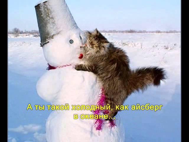 Зима ёшкин кот