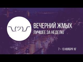 Вечерний жмых #5 . Лягушку Пепе в президенты, смертельное предсказание и горижоп