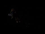 Лазерное шоу Кунгур