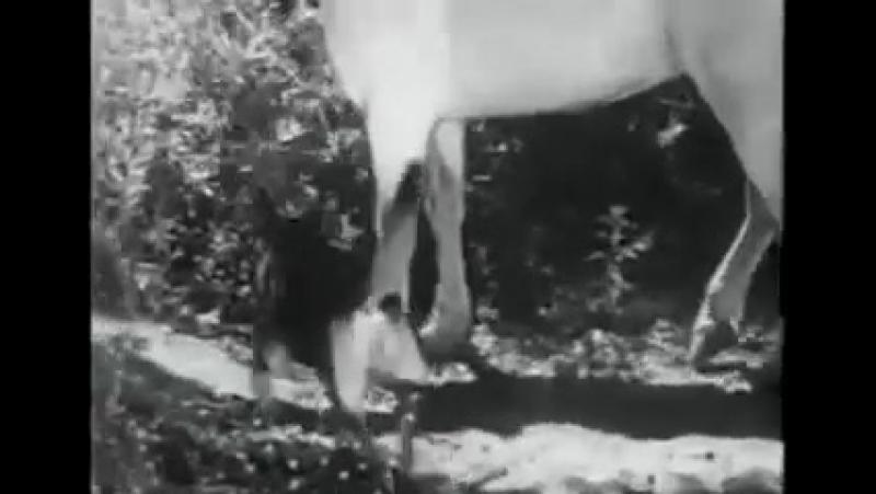 Т/С Приключения Рекса и Ринти: A Dogs Devotion 8 серия (1935г)