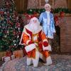 Дед Мороз в один клик