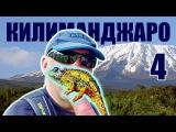 Восхождение на Килиманджаро (Танзания 2017) - Часть #4