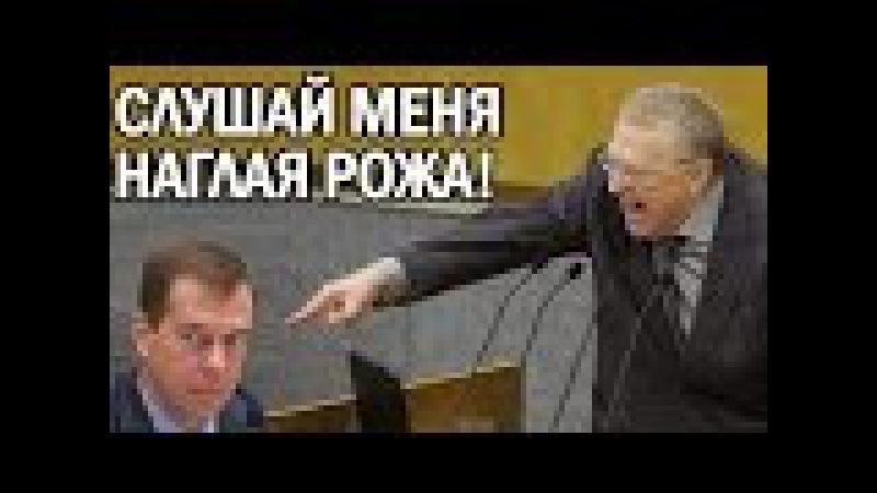 Жириновский ЗАЧИТАЛ СВОЙ ЧЕРНОВИК ПРИ МЕДВЕДЕВЕ 2017
