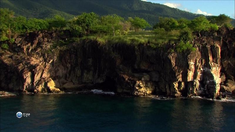 Райские острова с высоты птичьего полёта.Гваделупа